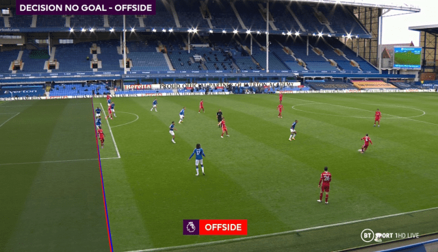 Mane was judged to be offside by the VAR in the build-up to what appeared to be Liverpool's winner at Goodison Park