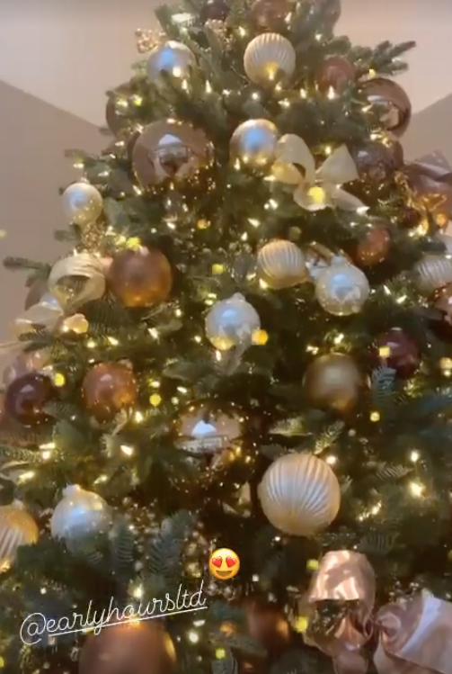 The video of Cheryl on a beautiful Christmas tree with golden and bronze balls
