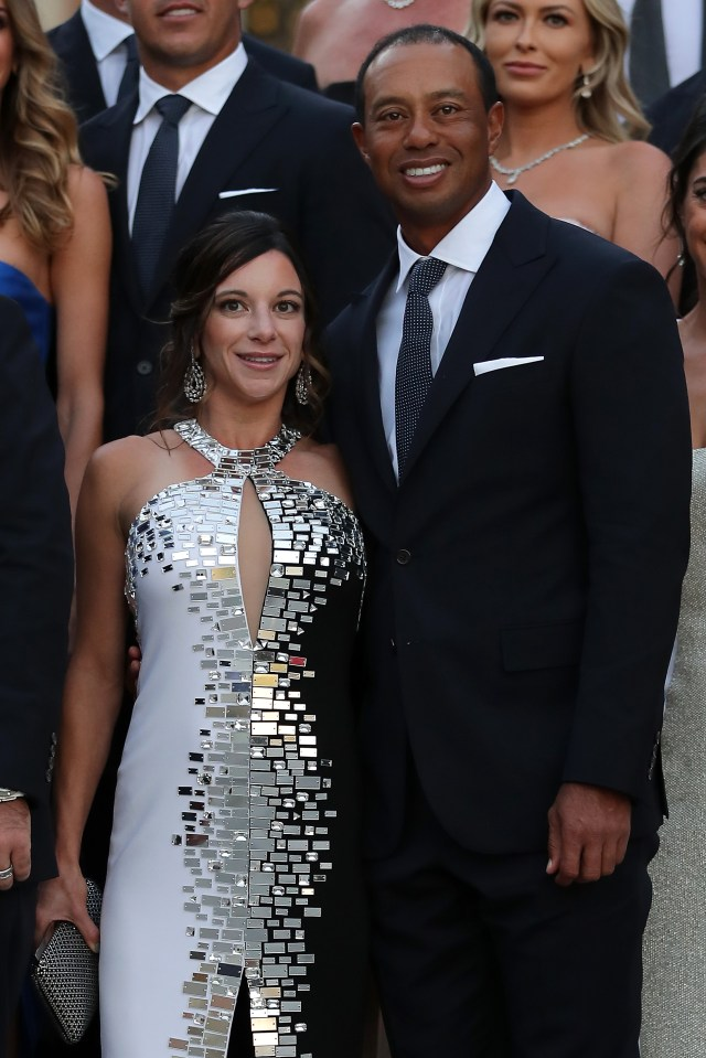 Tiger Woods, who is dating Erica Herman, has had a rollercoaster career