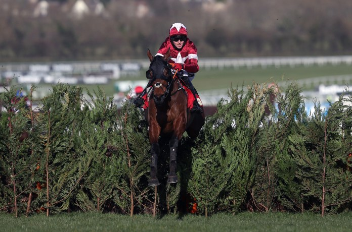 Tiger Roll is not in the Grand National... but he could still run at Aintree or in the Irish equivalent