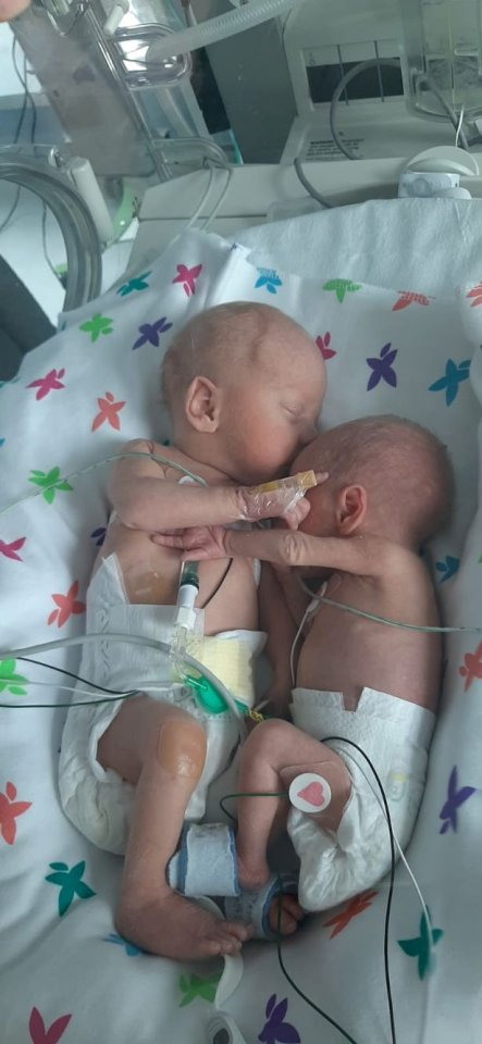Premature twins Louie, left, and Neve cuddle up