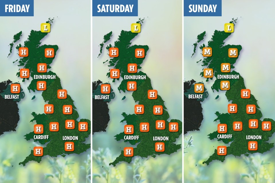 The pollen count over the next few days showing low (L) medium (M) and high (H)
