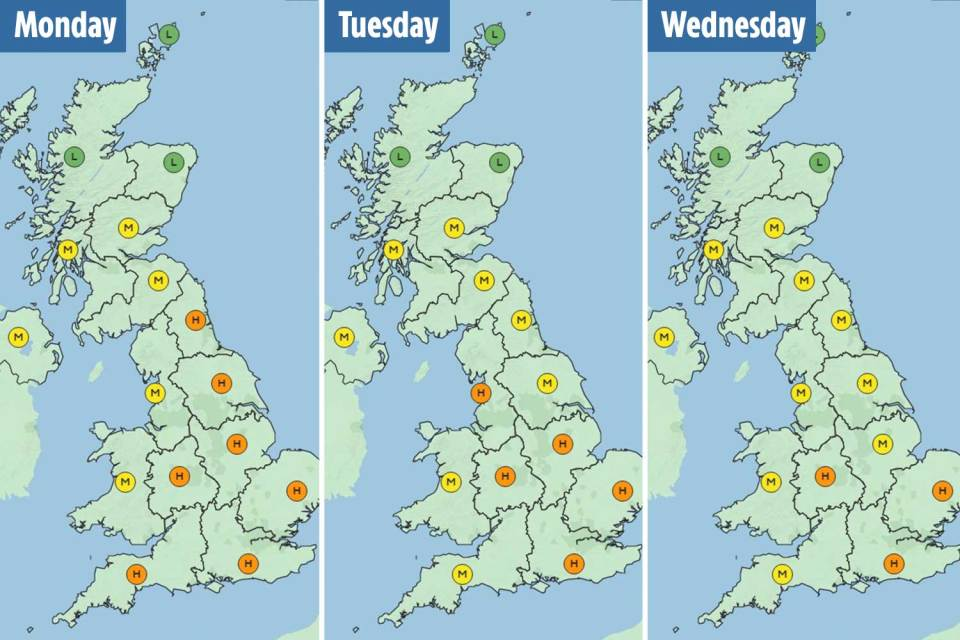 The maps above show which parts of the UK will be most affected by high levels of pollen this week