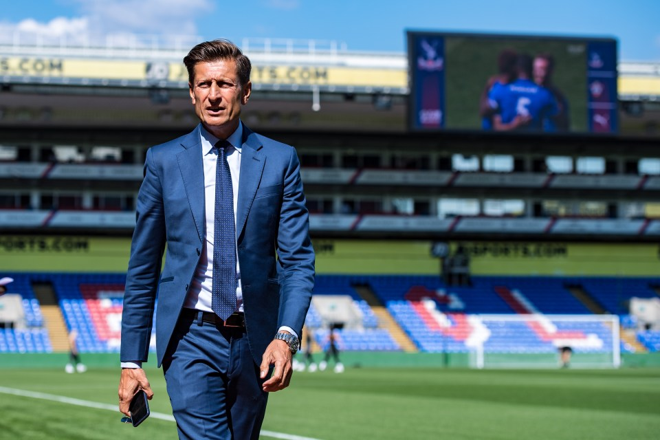 Palace chairman Steve Parish said they were 'extremely excited' to take viewers behind the scenes