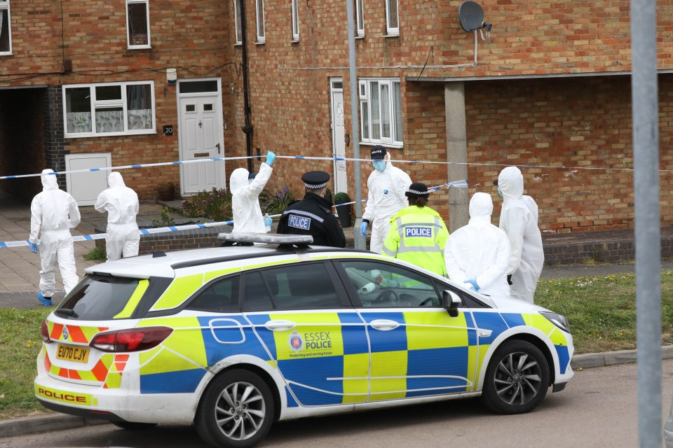 Forensic teams were at the murder scene in Laindon, Essex