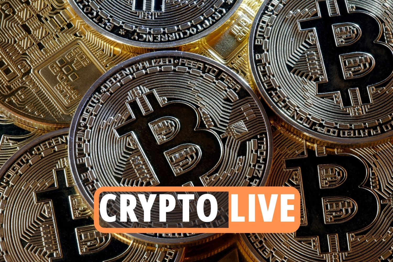 bitcoin markets live bitcoin paris
