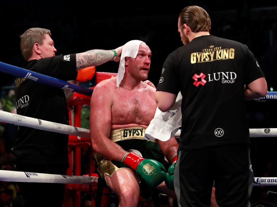 The Hitman was in the Gypsy King's corner for his first fight against the Bronze Bomber