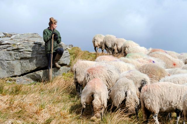 Fans have been flocking to Yorkshire to catch a glimpse of Amanda