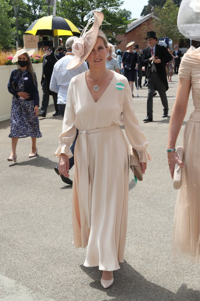 Sophie, Countess of Wessex, looked pretty in pink as she entered the venue