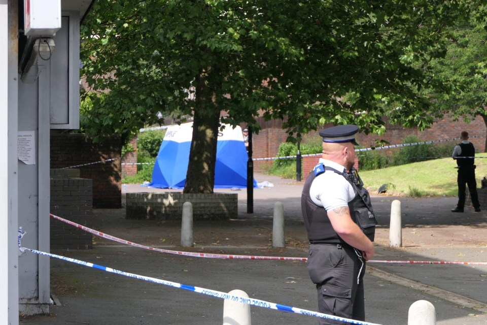 The teen was stabbed to death in Miall Walk, south London