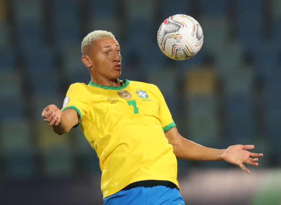 Everton star Richarlison wanted a penalty late on but his appeals were turned down