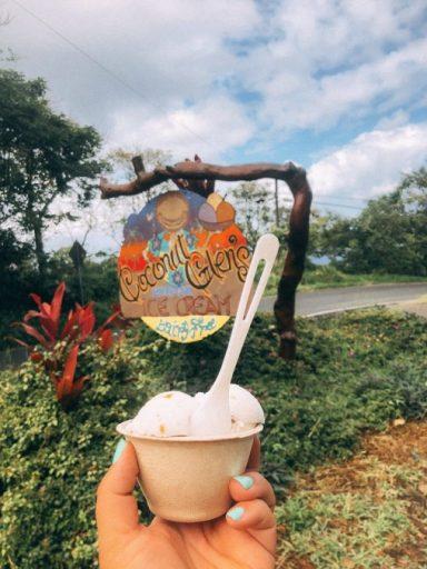 Coconut Glens Road to HAna