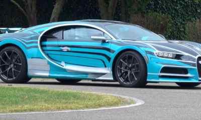Bugatti Chiron Zebra-1