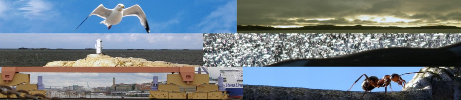 Developments aboard featured image