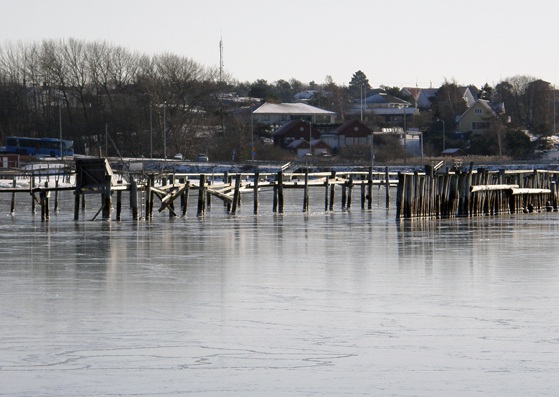 The frozen marina