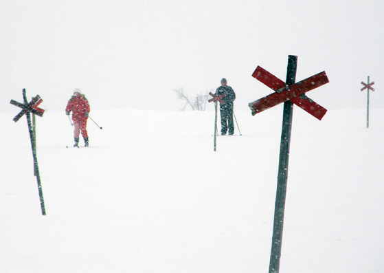 Skiing in the snow