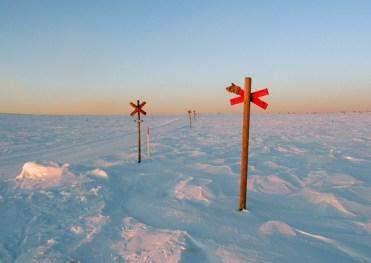 Vinterled - dawn