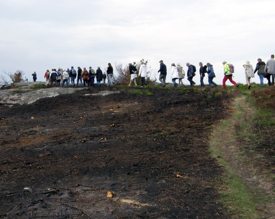 Walking the burned land 1