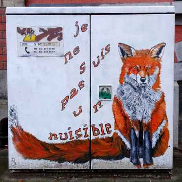The visible fox