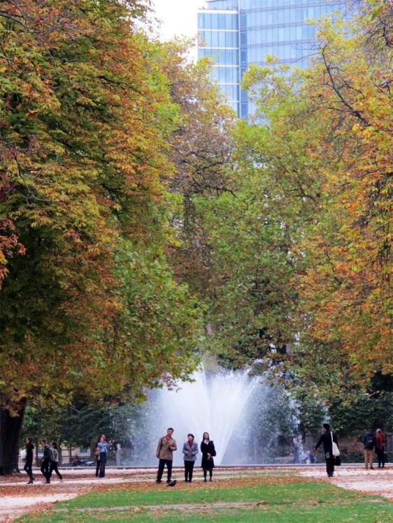 Park vista with fountain