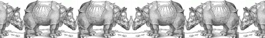 NaNoWriMo: Nano Rhino