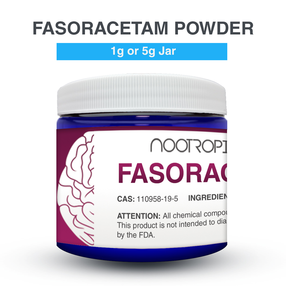 Fasoracetam_Review