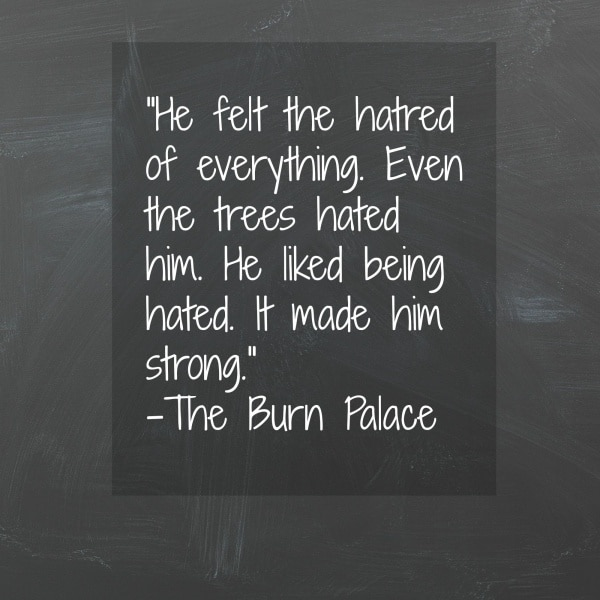 """""""The Burn Palace"""" by Stephen Dobyns is a psychological thriller that follows the aftermath of a newborn baby being stolen from a local hospital in Brewster, Rhode Island. A great book and a perfect book to add to a book club."""