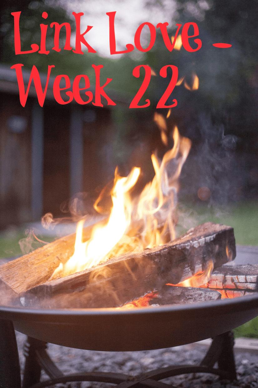 Link Love - Week 22