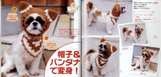 japanese-dogs-1