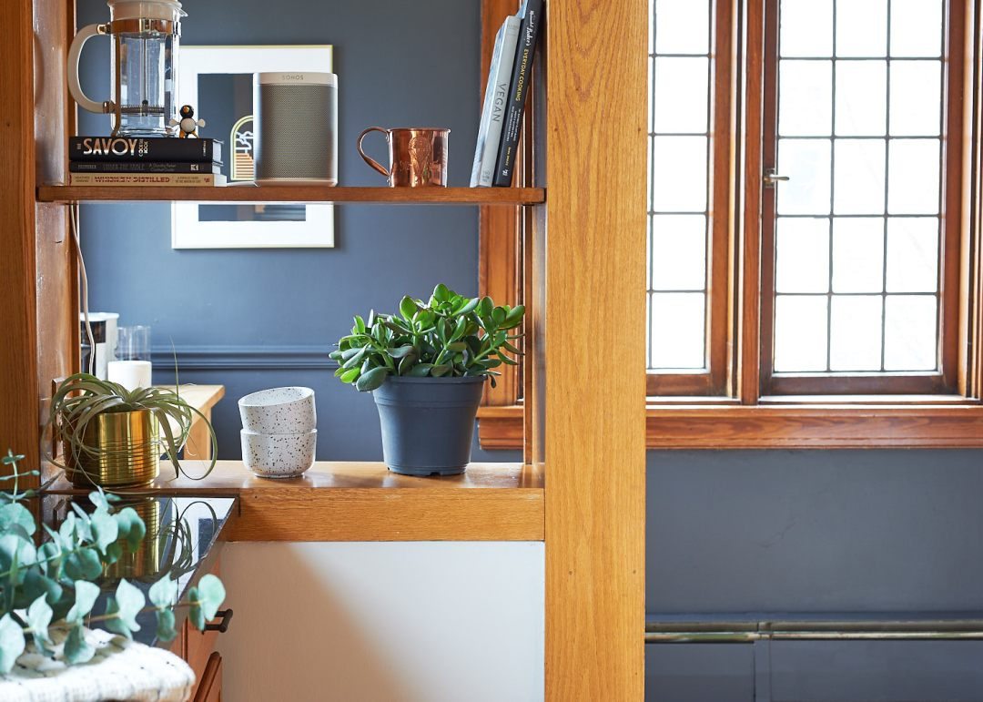 kitchen shelves plants sonos dark walls