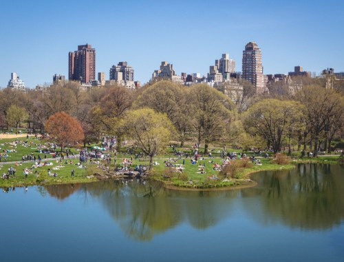New York City icons: Central Park