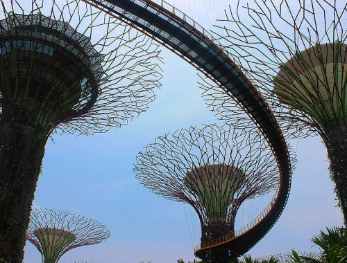 5 Things to Know Before Traveling to Singapore