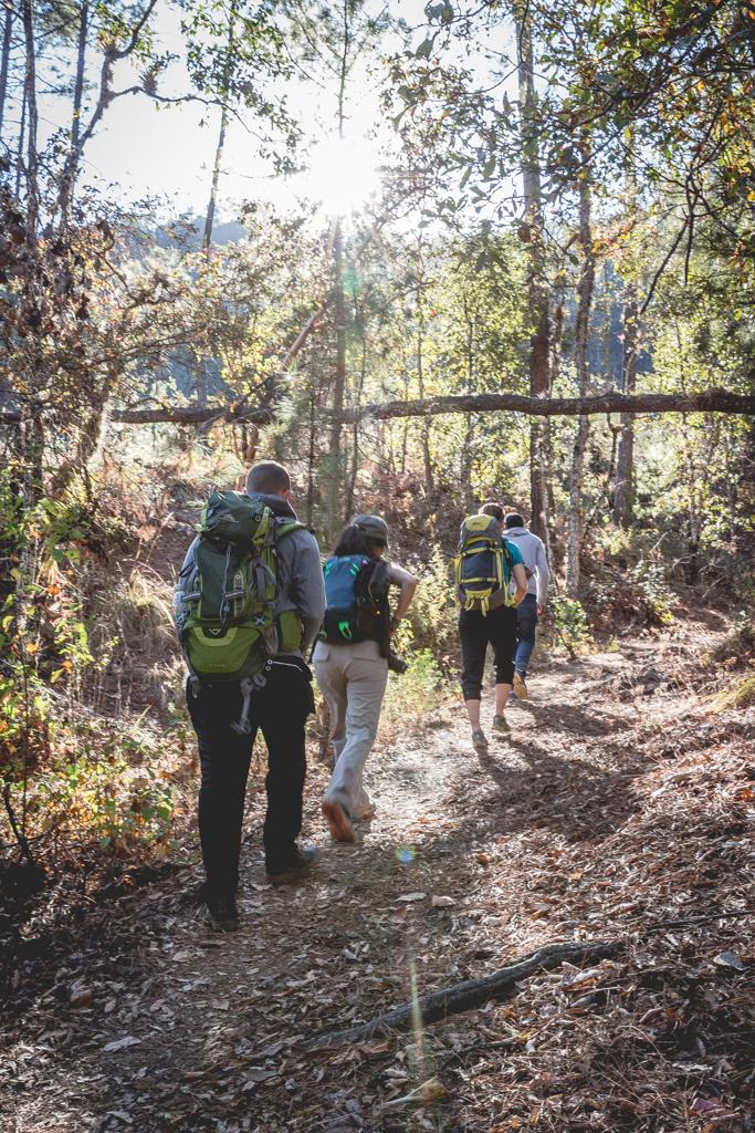 Los Pueblos Mancomunados: Hiking in Mexico