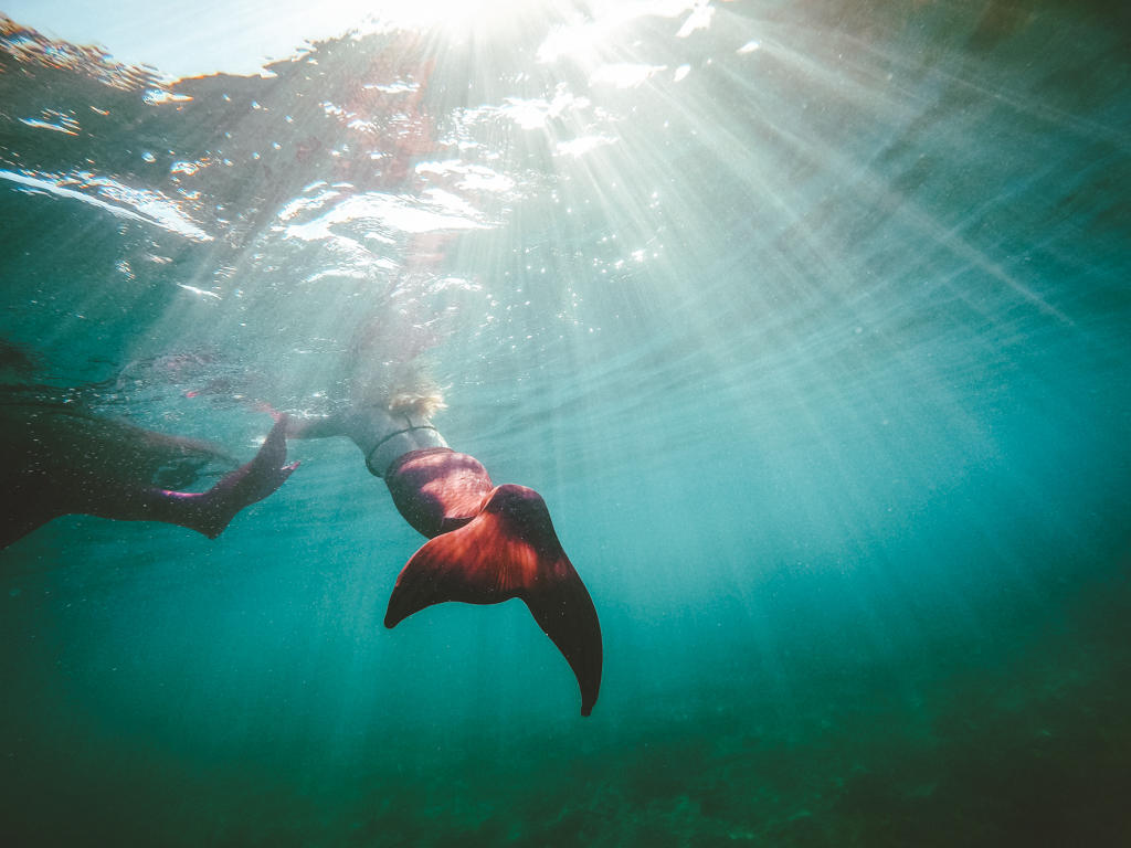Mermaid tour in Maui