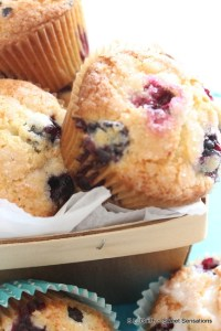 Served warm with a dab of butter these Blueberry Muffins will brighten the dreariest day.