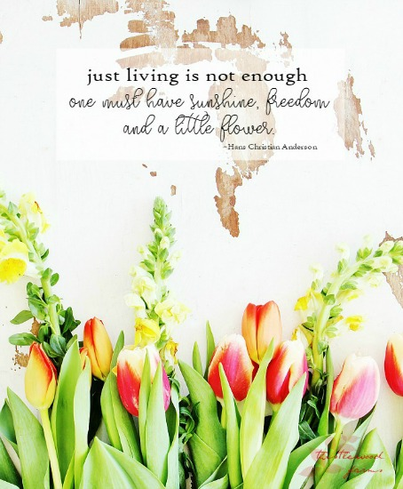 just-living-is-not-enough-one-must-have-sunshine-freedom-and-a-little-flower1