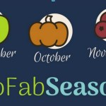 SoFab Seasons Cranberry