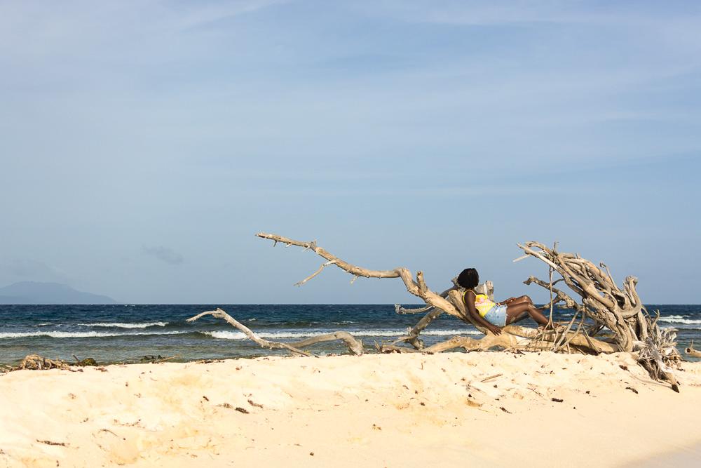 Sitting on driftwood enjoying the view of Kingston