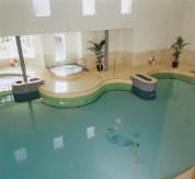 Pool - Roganstown