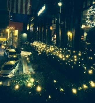 View From Wilde Restaurant