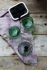 Blackberry and Thyme Gin and Topic