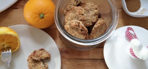 Winter Orange and Cinnamon Cookies