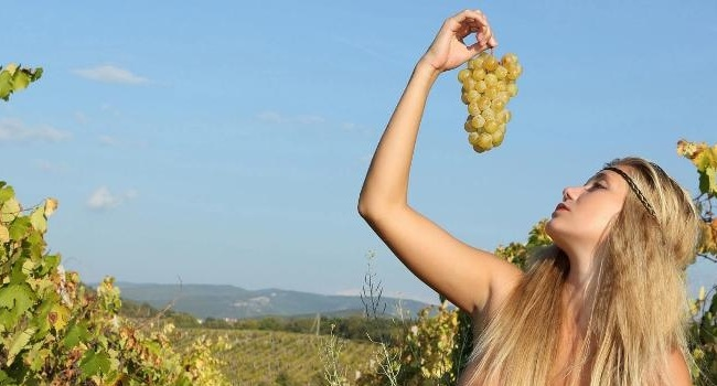 Real Wines: Mother Nature Knows Best