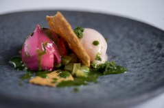 Sukí Red Berry Tea Cake with Rhubarb Sorbet and Iced Sorrel Recipe by Chef Danni Barry