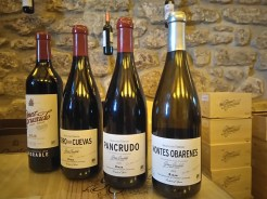 Fast Track to Rioja - Haro Station Travel Guide Gomez Cruzado