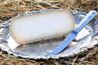 donkey-milk-cheese