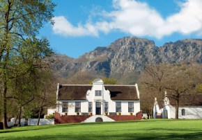 The Greatest Cape: Rustenberg & The South African Renaissance