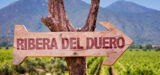 Spain's Ribera del Duero — Rioja's Rival