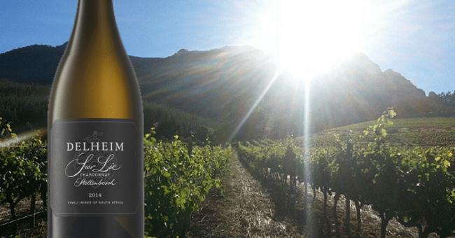 Delheim Chardonnay Sur Lie 2014 – Wine of the Week from O'Briens