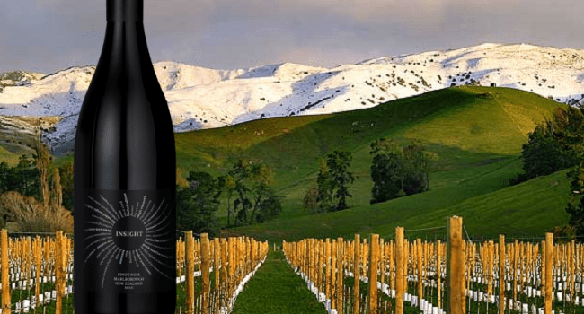 Insight Vineyard Pinot Noir – Wine of the Week from OBriens Wine